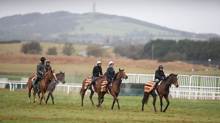 All set for Dublin Racing Festival 2020
