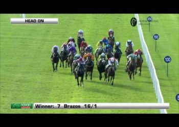 Racing from Navan 14th October| Irish Cesarewitch|